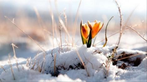 Vremea în weekend 15-17 februarie. Prognoza meteo anunță temperaturi maxime de 16 grade Celsius