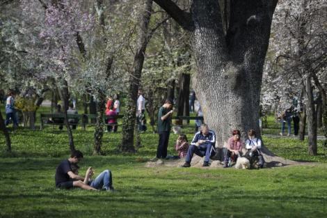 Vremea în București 21 martie. Prognoza meteo pentru Capitală