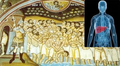 """Sfinții 40 Mucenici. Ce se întâmplă în organism dacă bei """"44 de pahare cu vin"""""""