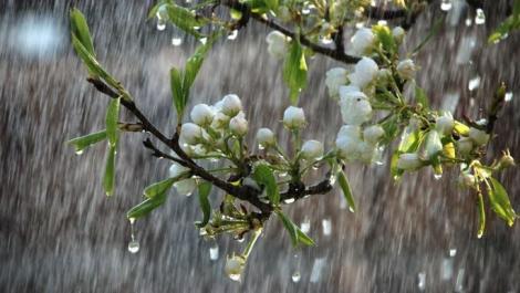Vremea 2 aprilie 2019. Prognoza meteo anunță ploi și temperaturi scăzute