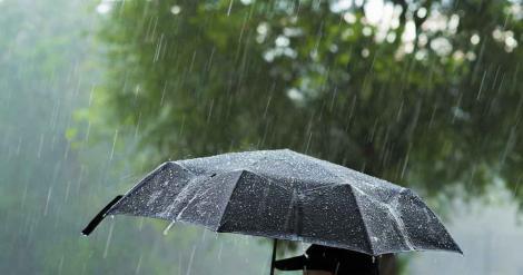 Vremea 23 aprilie 2019. Cer înnorat, precipitații și vânt puternic