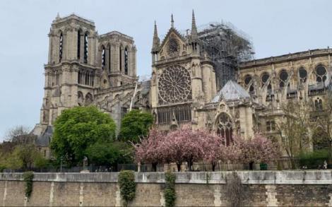 Pericol imens pentru catedrala Notre Dame, după incendiu! Motivul pentru care francezii au intrat în panică