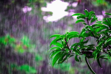Vremea se schimbă radical. Prognoza meteo de weekend, în București și în țară: Ploi și furtuni