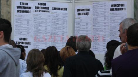 Zeci de mii de locuri de muncă vacante. Se caută programatori, de la 5.000 de lei salariu, dar și vânzători pe 3.000 ron