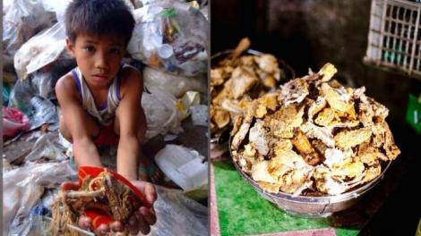 Video. Carnea și resturile de mâncare adunate de la groapa de gunoi sunt regătite și date copiilor