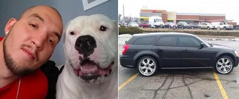 """Un bărbat și-a pus mașina la vânzare ca să facă rost de bani pentru a-și salva câinele: """"L-am simţit ca şi cum încerca să-mi spună: 'Ajuta-mă!'"""""""