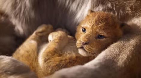 """Lungmetrajul """"The Lion King"""", al doilea cel mai bun debut al anului în box office-ul nord-american"""