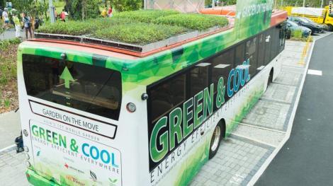 Studiu: Acoperișurile verzi instalate pe autobuze pot scădea temperatura din interior