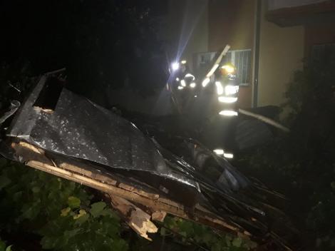 Dolj: Zeci de copaci au căzut pe maşini şi pe carosabil, în urma unei furtuni puternice