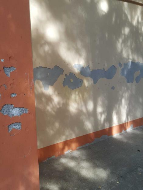 Mai multe camere de la Tabăra Comorova din Neptun, închise de Protecţia Consumatorilor, după ce s-a găsit mizerie, pereţi scorojiţi sau crăpaţi