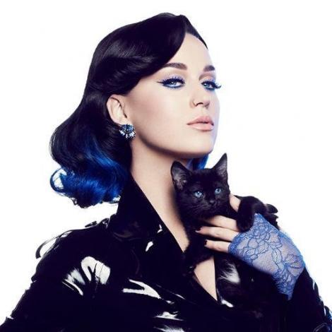 Katy Perry va plăti 2,7 milioane de dolari pentru plagiat