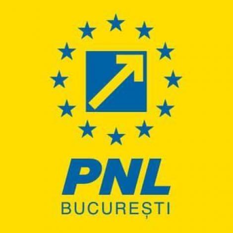 PNL Bucureşti: 400 de minori dispar anual din România şi nimeni nu ştie nimic de ei