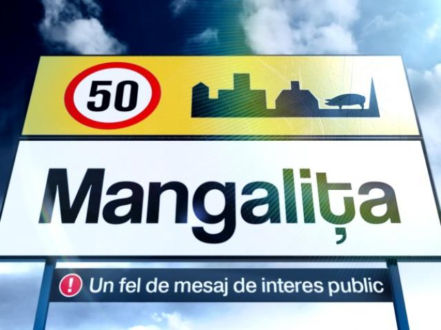 Nu ai voie să ratezi! Mangalița, un nou serial de comedie, în curând, la Antena 1!