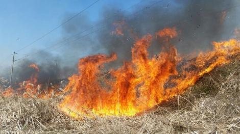 Risc ridicat de producere a incendiilor în Creta şi insulele Dodecanez