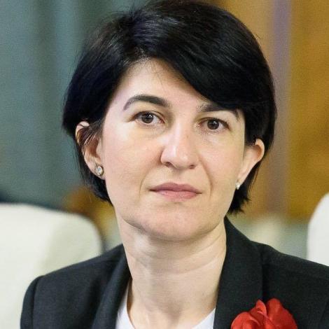 Violeta Alexandru: PNL a depus plângere prealabilă faţă de hotărârile de confirmare a companiilor municipale