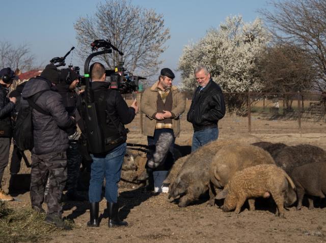 Din culisele serialului de comedie Mangalița. Premiera – duminică, 29 septembrie, ora 20:00, la Antena 1
