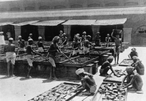 Povestea incredibilă a celui mai mare comerț de opiu din lume. Cum a reușit un drog să îi sărăcească pe indieni