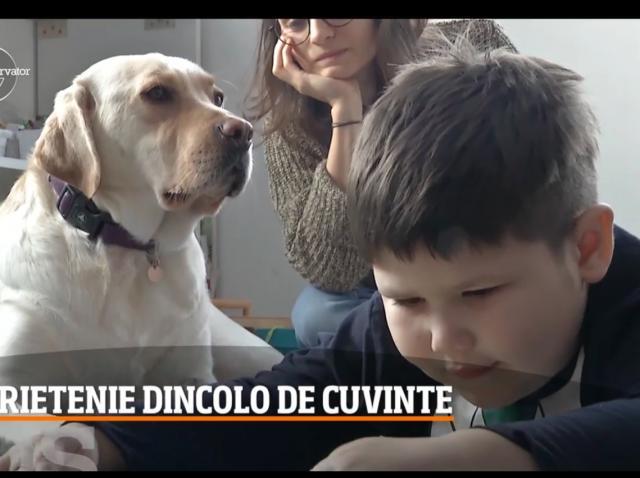 În Cluj, trei labradori lucrează cu nomă întreagă într-un centru pentru copii cu autism