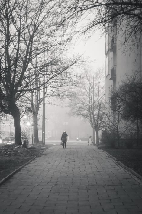 Meteo 17 ianuarie 2020. Vremea va fi închisă, iar ceața va îngreuna traficul