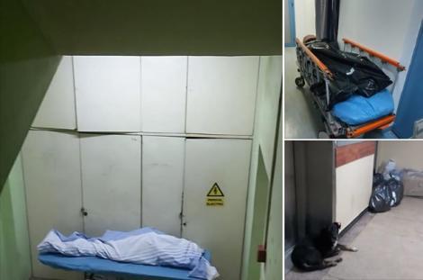 Pacienți morți, abandonați pe scările interioare ale unui spital din Capitală, printre câini și saci cu gunoi. Imagini cu puternic impact emoțional