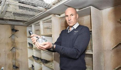 Români acuzați că au furat porumbei în valoare de 700. 000 euro
