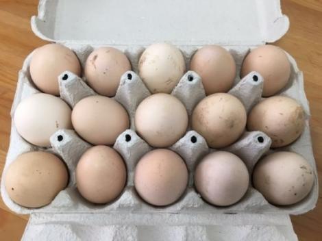 Cum verifici cât de proaspăt este un ou. Trucul pe care trebuie să-l știe orice gospodină!