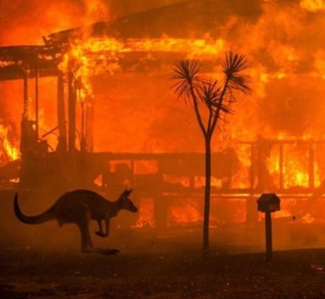 Atenţionare de călătorie emisă de MAE - În Australia se menţine pericolul privind incendiile de vegetaţie