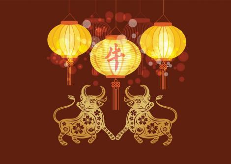 Ce îți rezervă anul 2021 în funcție de Zodiacul Chinezesc