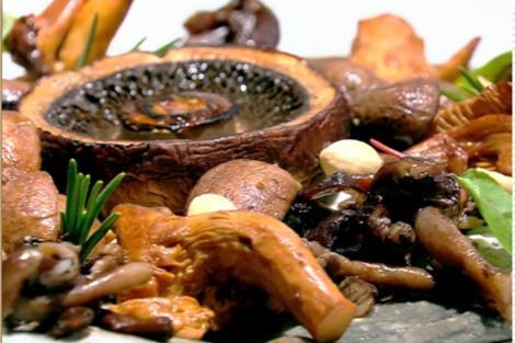 Tartă cu ciuperci și alune de pădure. Rețeta lui Vlăduț