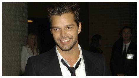 Ricky Martin, în anul 2003