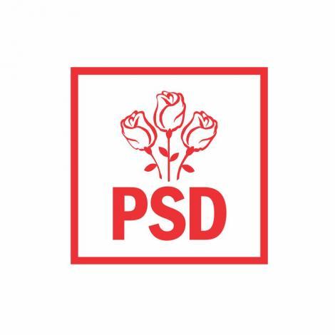 PSD: Există motive serioase pentru a pune întrebarea dacă 2019 va fi ultimul an de creştere economică a României/ Obsesia pentru anticipate  ar putea determina intrarea României în recesiune în cursul anului 2020
