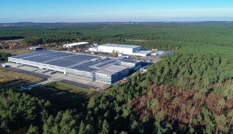 Un tribunal din Germania a ordonat Tesla să nu mai taie pădurea de pe terenul unde construieşte prima sa fabrică de baterii şi automobile din Europa