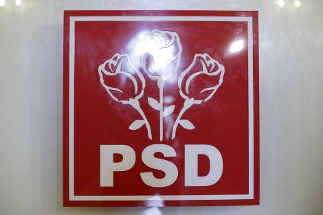 PSD: PNL a început cu un abandon campania electorală/ După ce au măsurat în sondaje tot felul de candidaţi, au ajuns la concluzia că tot Gabriela Firea este cea mai bună/ Liberalii recunosc public că nici nu ştiu, nici nu pot, nici n-au cu cine