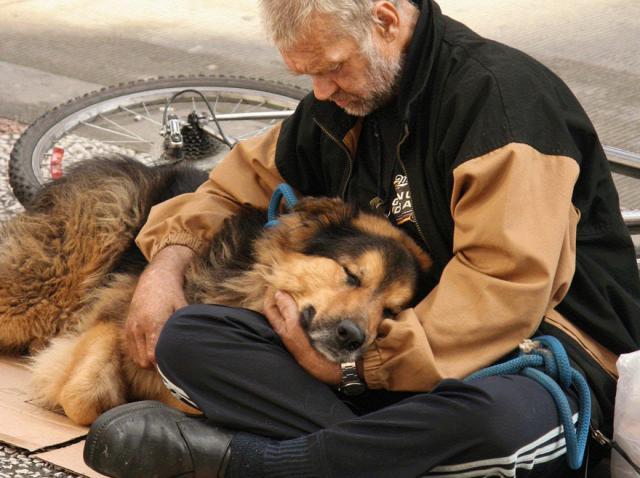 Galerie foto: Imagini emoționante care înfățișează dragostea pură și necondiționată a câinelui pentru stăpân. Legătura puternică dintre oamenii străzii și patrupezii lor
