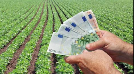 COVID-19: Ministerul Agriculturii amână lansarea sesiunilor de depunere proiecte pentru unele măsuri și submăsuri