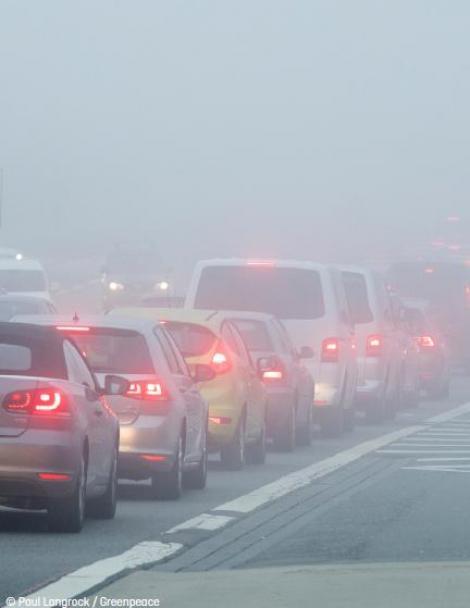 Protest cu măşti de gaz la Ministerul Mediului! Se cer măsuri urgente pentru oprirea poluării în marile oraşe