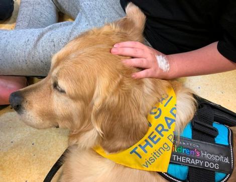 """Un băiețel de 3 ani cu o afecțiune cerebrală rară și-a revenit datorită unui câine. """"Medicii de la terapie intensivă plângeau, era un miracol pur"""""""