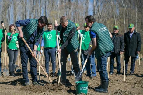 La o zi după ce activista Greta Thunberg a cerut românilor să se unească pentru a salva pădurile, Klaus Iohannis și Ludovic Orban au plantat copaci
