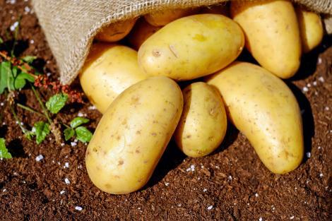 Comercianții profită de pandemie: Cartofii sunt mai scumpi cu 11%, iar prețurile unor alimente au explodat
