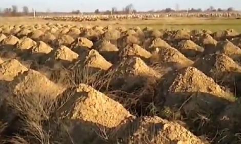 Primarul oraşului ucrainean Dnipro pune să se sape sute de morminte pentru a-i speria pe locuitori să respecte izolarea împotriva covid-19