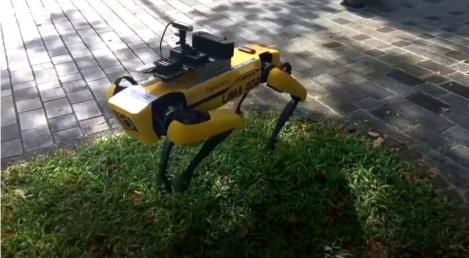 Un câine robot impune distanţarea socială într-un parc din Singapore