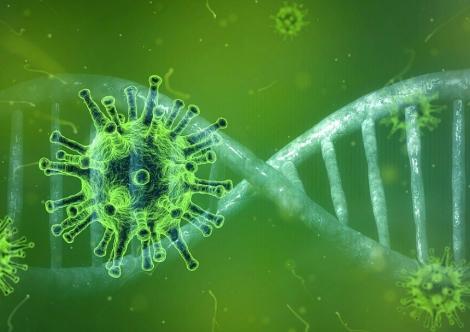 Coronavirus în Spania - Niciun deces înregistrat în ultimele 24 de ore. O nouă scădere a contaminărilor