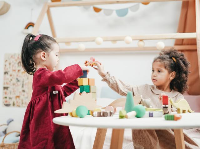 Cum ar trebui să fie jucăriile din viața copilului tău?
