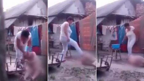 A murit bătrâna din Crețeni torturată de către propria fiică. Acesta a fost bătută și maltratată zile la rând