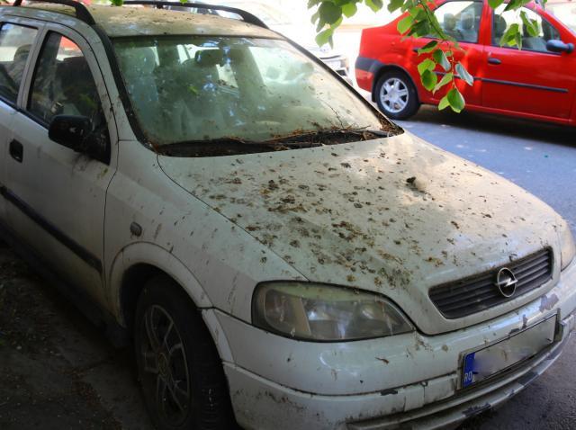 Oficial! Ce se întâmplă cu mașinile abandonate, lăsate în parcările publice. Măsurile legii actuale sunt drastice