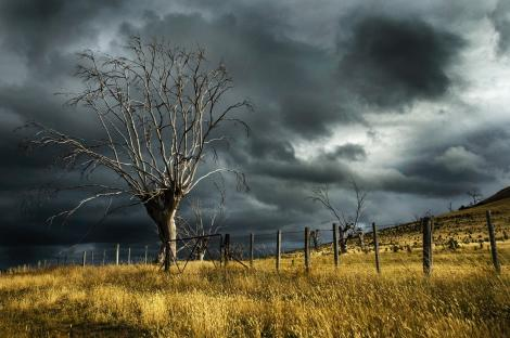 Cod portocaliu de furtuni și fenomene meteo periculoase în trei județe din România! Cât ține avertizarea de vreme rea