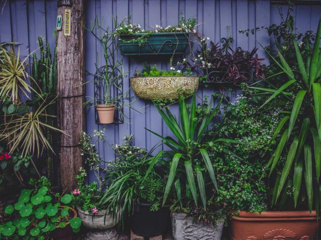 (P) Cum să-ți decorezi grădina în mod simplu și creativ? Top 5 sfaturi de pus imediat în practică