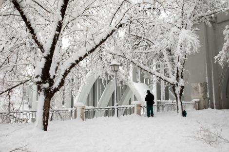 Prognoza meteo: zăpadă, vânt, polei