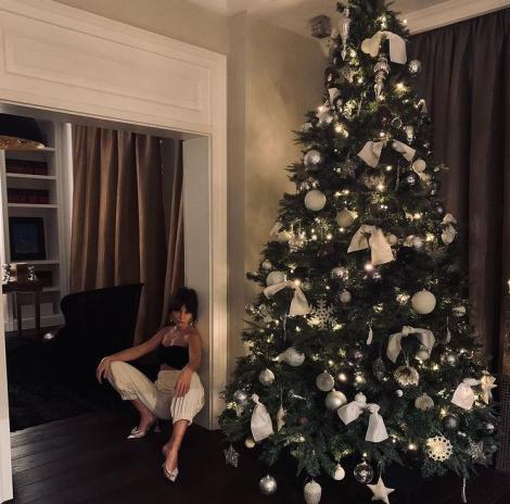 Ținuta cu care a întâmpinat Noul An. Dana Budeanu face furori într-o rochie spectaculoasă