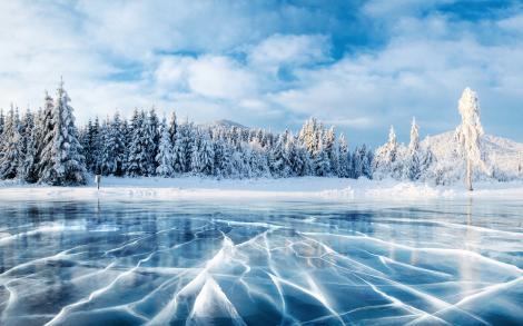 lac inghetat, cu padurea in spate pe care e zapada